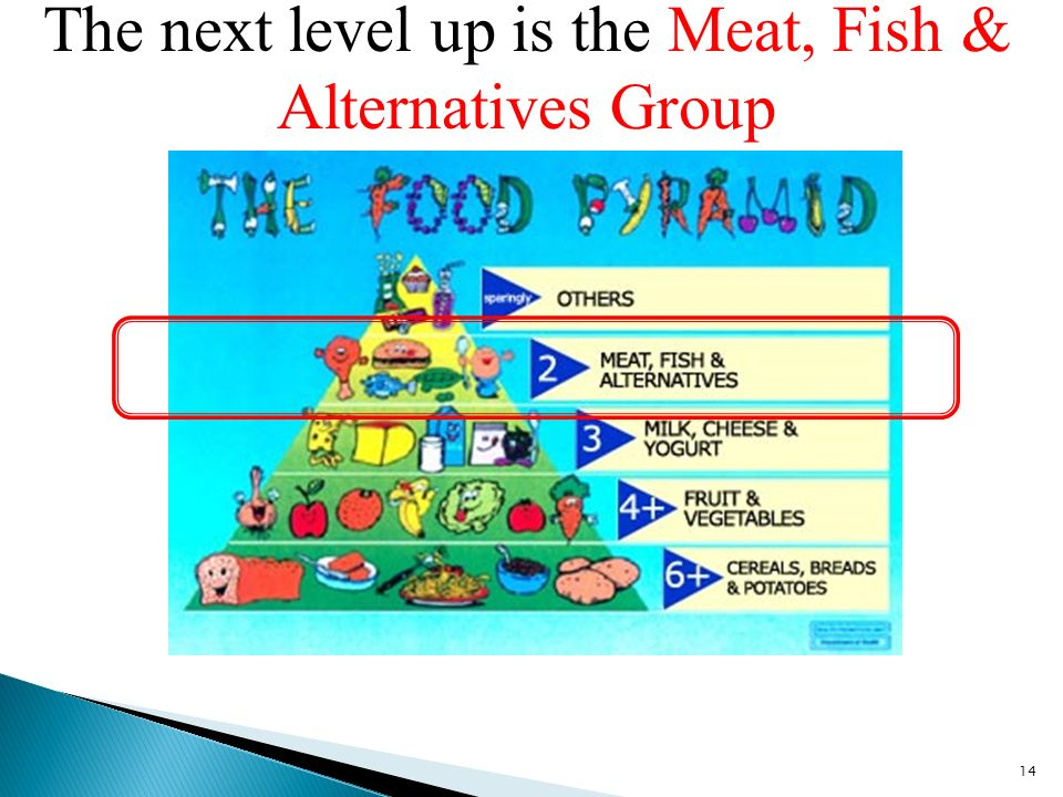 The next level up is the Meat, Fish & Alternatives Group 14