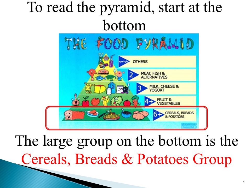 To read the pyramid, start at the bottom 4 The large group on the bottom is the Cereals, Breads & Potatoes Group