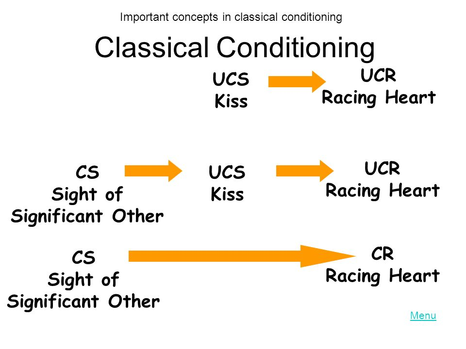 Classical Conditioning UCS Kiss UCR Racing Heart CS Sight of Significant Other UCS Kiss UCR Racing Heart CS Sight of Significant Other CR Racing Heart Important concepts in classical conditioning Menu