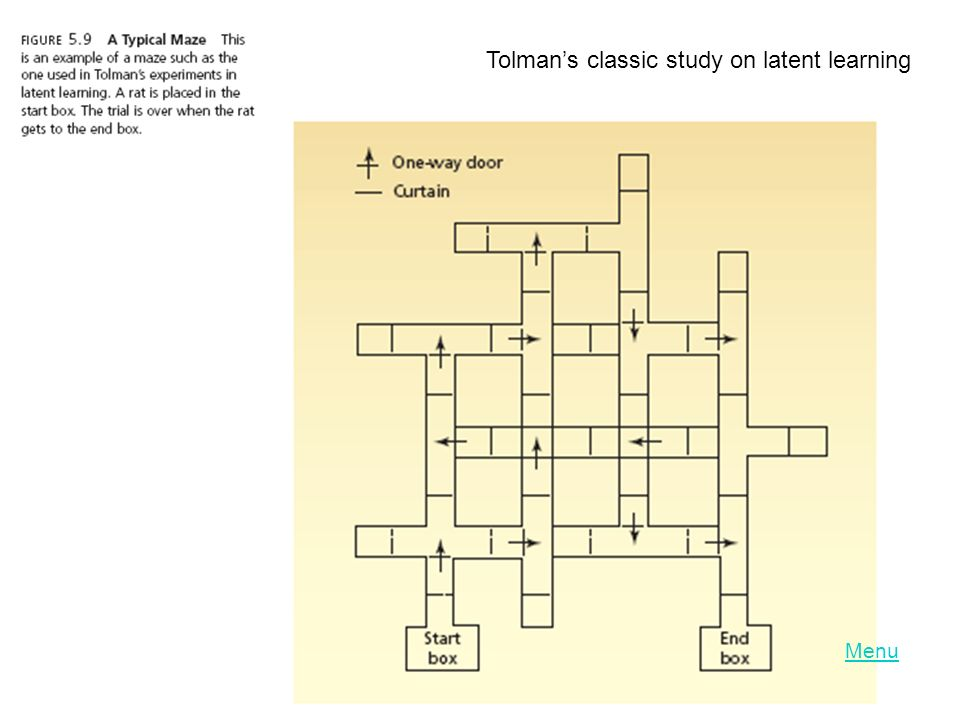 Tolman's classic study on latent learning
