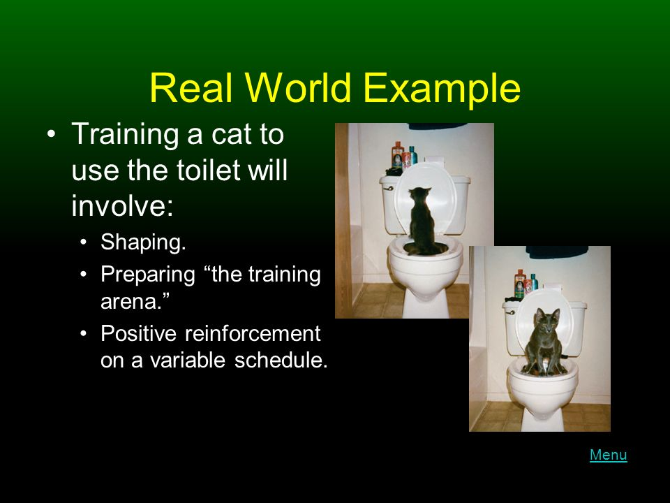Real World Example Training a cat to use the toilet will involve: Shaping.