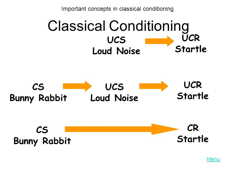 Classical Conditioning UCS Loud Noise UCR Startle CS Bunny Rabbit UCS Loud Noise UCR Startle CS Bunny Rabbit CR Startle Important concepts in classical conditioning Menu