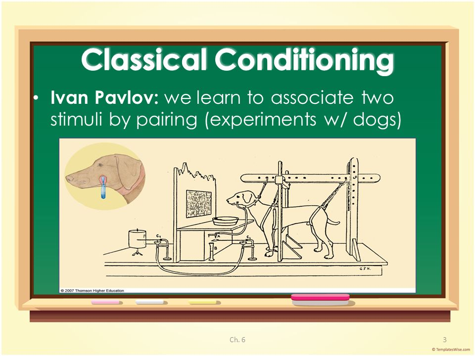 Ivan Pavlov: we learn to associate two stimuli by pairing (experiments w/ dogs) 3Ch. 6