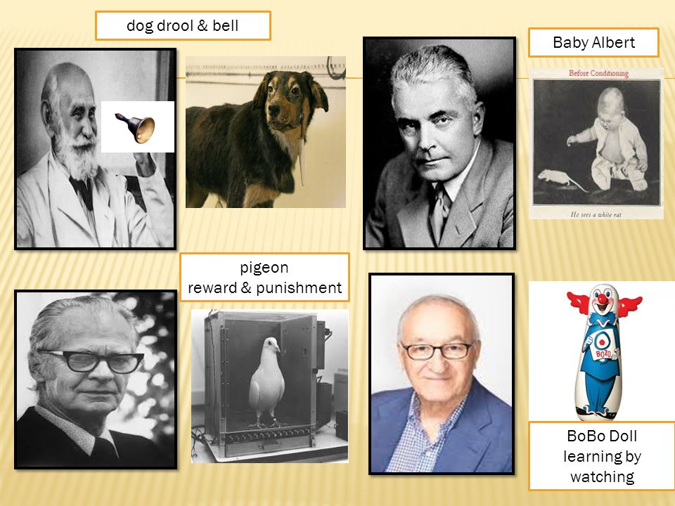 pavlov and watson
