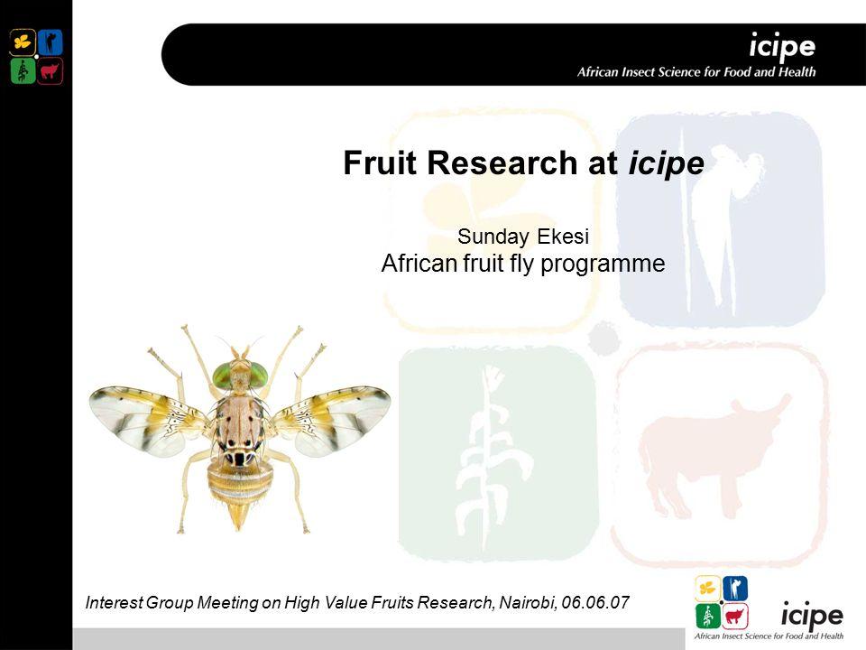 Fruit Research at icipe Sunday Ekesi African fruit fly programme