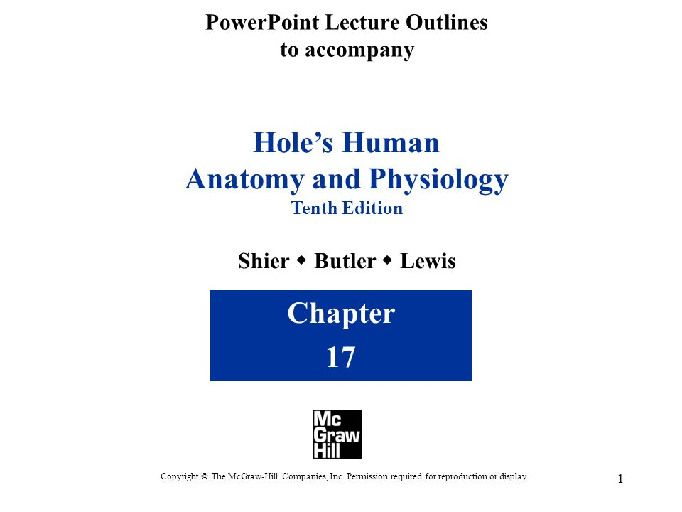 Nice Shier Butler And Lewis Holes Human Anatomy And Physiology ...