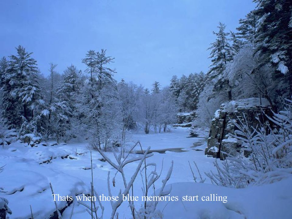 12ef5ea48 Ill have a blue christmas without you Ill be so blue just thinking ...