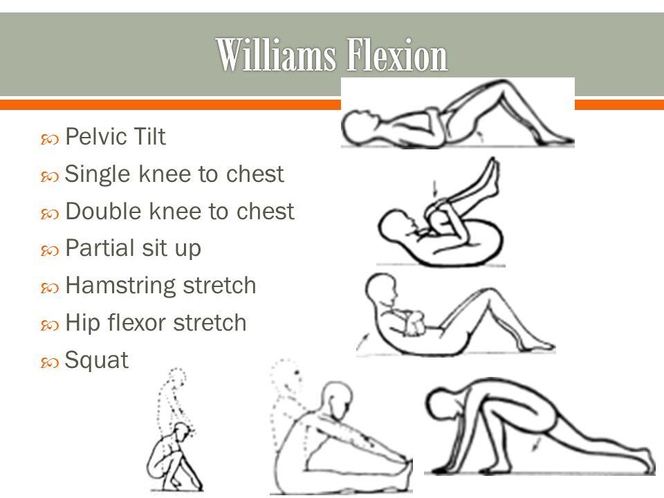 Williams Flexion Exercises Pictures