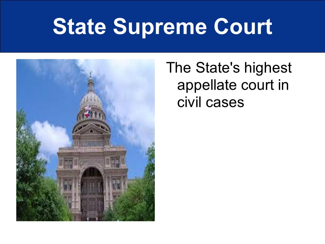 State Supreme Court The State s highest appellate court in civil cases