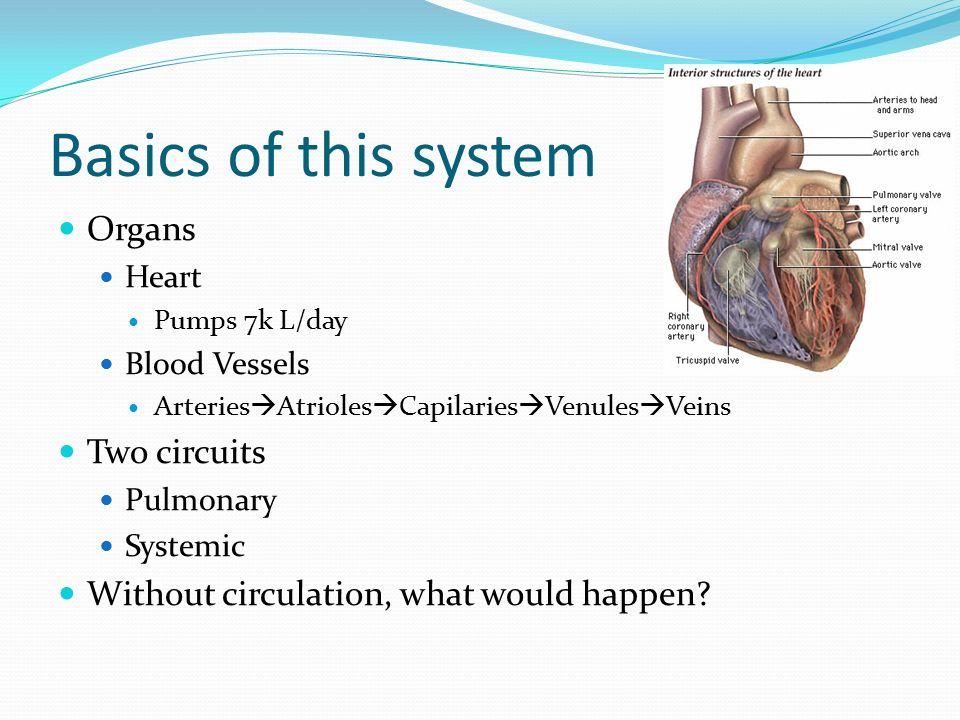 Cardiovascular System Basics Of This System Organs Heart Pumps 7k L