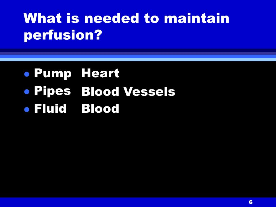 6 What is needed to maintain perfusion l Pump l Pipes l Fluid Heart Blood Vessels Blood
