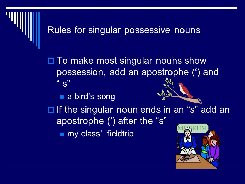 Singular Possessive Noun  Shows that one person, place, or thing has or owns something