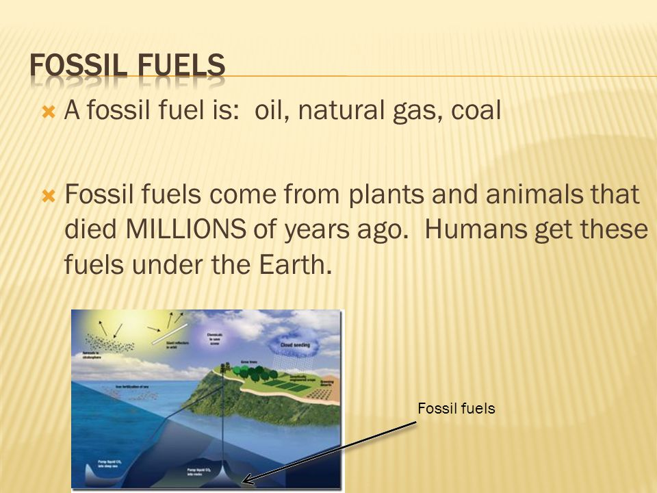 A fossil fuel is: oil, natural gas, coal  Fossil fuels come from plants and animals that died MILLIONS of years ago.