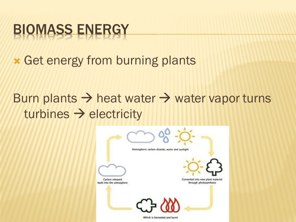  Get energy from burning plants Burn plants  heat water  water vapor turns turbines  electricity
