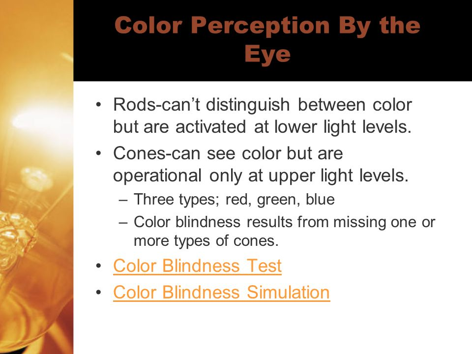 Color Perception By the Eye Rods-can't distinguish between color but are activated at lower light levels.