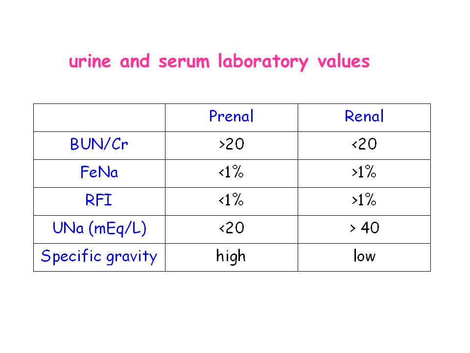 Acute Renal Failure Arf Acute Kidney Injury Aki Mitra Basiratnia Ped Nephrologist Sums Ppt Download