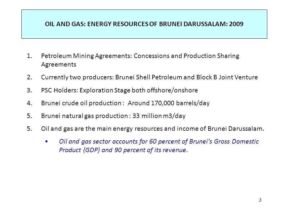 1 km APEC EWG 40 BRUNEI DARUSSALAM Short-Term Energy