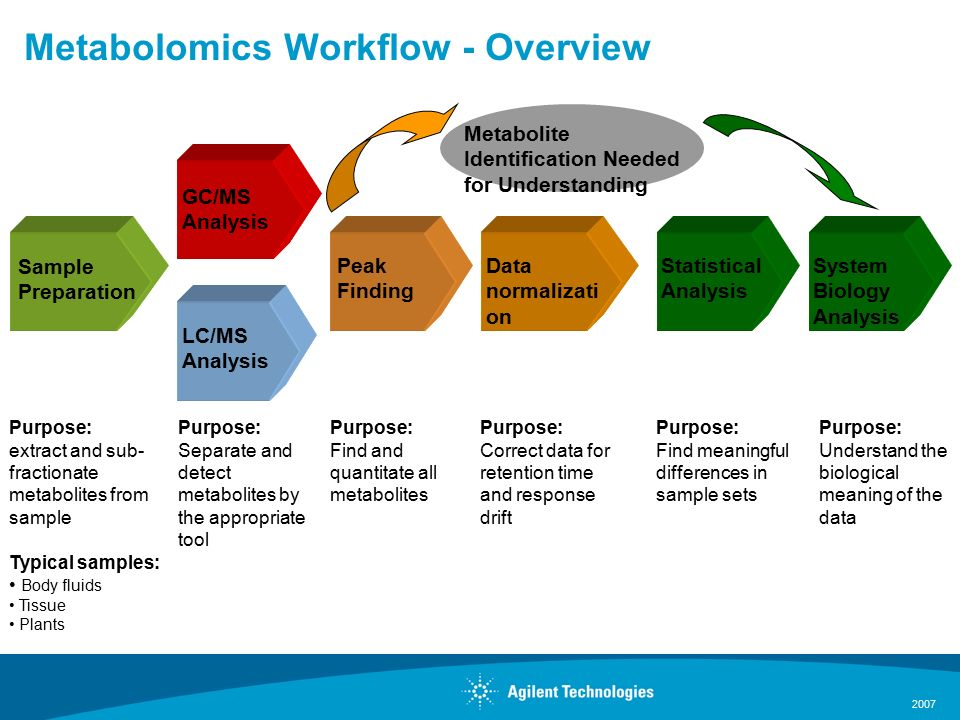 2007 LC/MS Analysis Metabolomics Workflow - Overview Sample Preparation Purpose: extract and sub- fractionate metabolites from sample Typical samples: Body fluids Tissue Plants GC/MS Analysis Purpose: Separate and detect metabolites by the appropriate tool Purpose: Find meaningful differences in sample sets Statistical Analysis Purpose: Find and quantitate all metabolites Peak Finding Purpose: Correct data for retention time and response drift Data normalizati on Purpose: Understand the biological meaning of the data System Biology Analysis Metabolite Identification Needed for Understanding