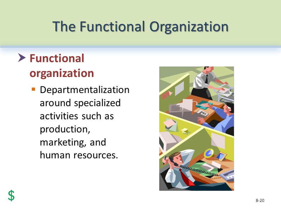 The Functional Organization  Functional organization  Departmentalization around specialized activities such as production, marketing, and human resources.