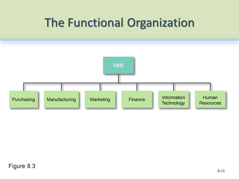 The Functional Organization 8-21 Figure 8.3