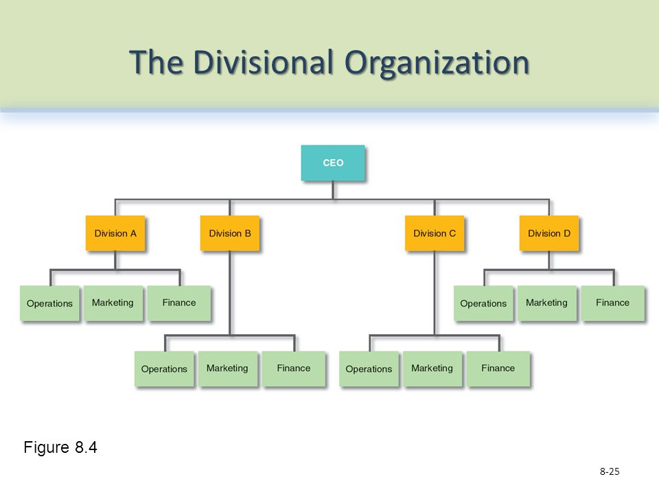 The Divisional Organization 8-25 Figure 8.4