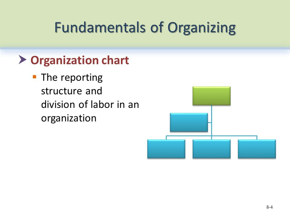 Fundamentals of Organizing  Organization chart  The reporting structure and division of labor in an organization 8-4