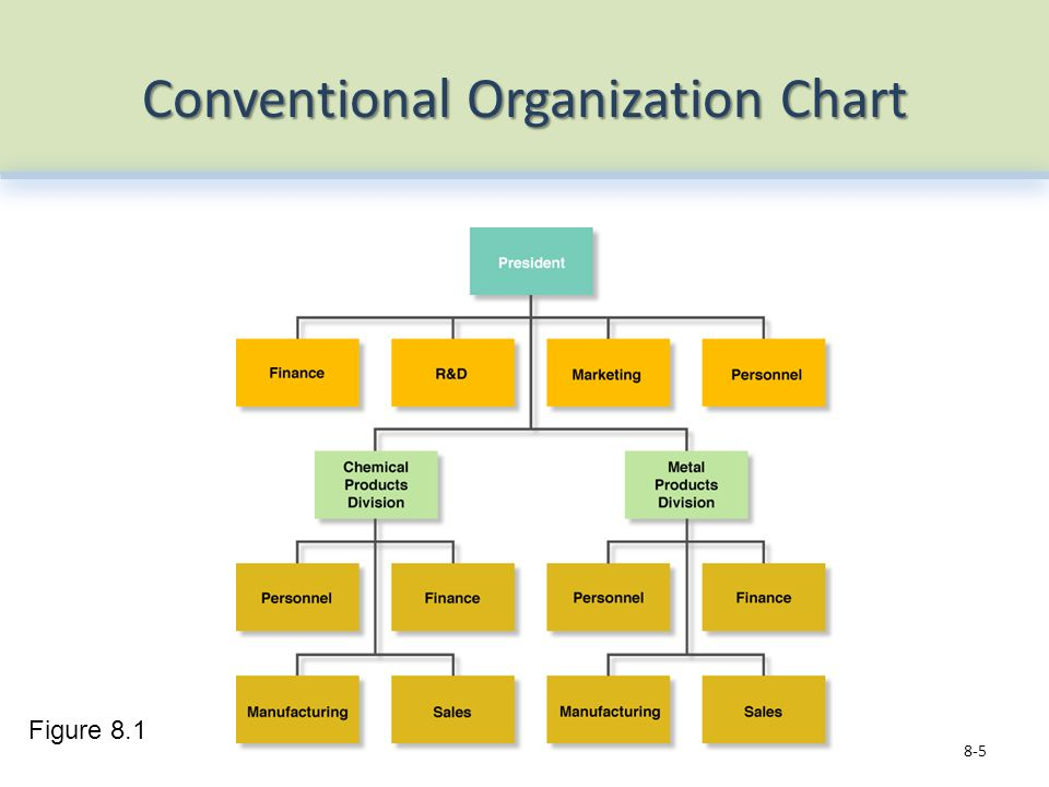 Conventional Organization Chart 8-5 Figure 8.1