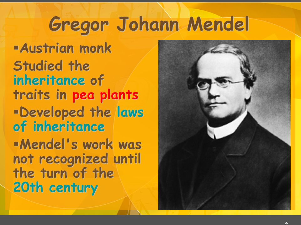 5 Gregor Mendel ( ) Responsible for the Laws governing Inheritance of Traits