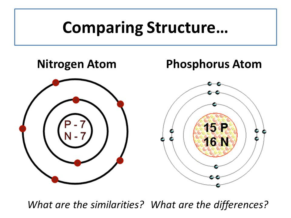 Welcome to strand two capt review please take out paper or an comparing structure nitrogen atomphosphorus atom what are the similarities ccuart Image collections