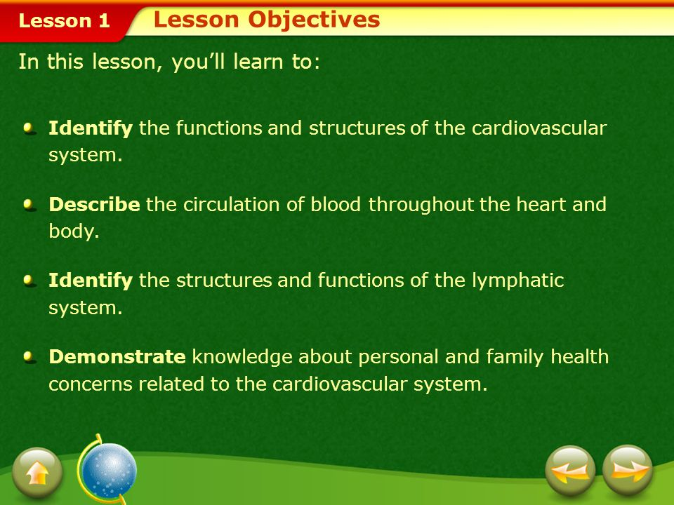 Lesson 1 The Cardiovascular System Any physical activity that raises your heart rate will help strengthen your cardiovascular system.