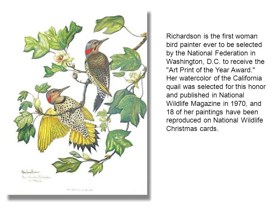 Anne Worsham Richardson opened Birds I View Gallery in downtown ...