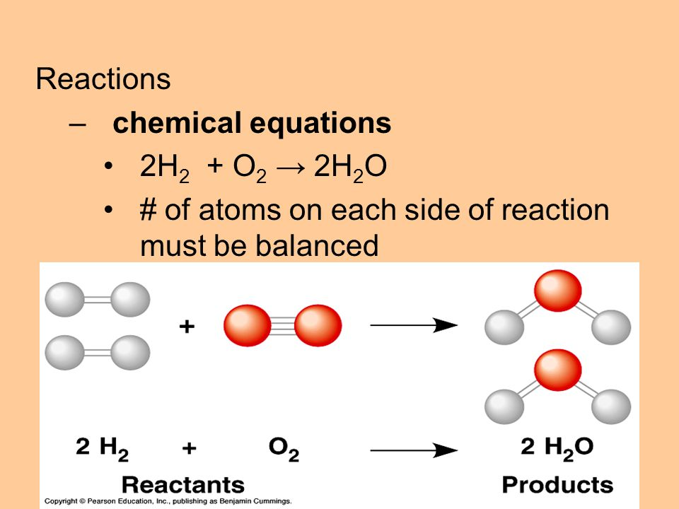 Reactions –chemical equations 2H 2 + O 2 → 2H 2 O # of atoms on each side of reaction must be balanced coefficients must be balanced __ C 6 H 12 O 6 → C 12 H 22 O 11 + H 2 O