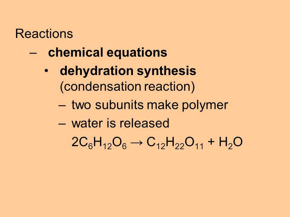Reactions –chemical equations dehydration synthesis (condensation reaction) –two subunits make polymer –water is released 2C 6 H 12 O 6 → C 12 H 22 O 11 + H 2 O