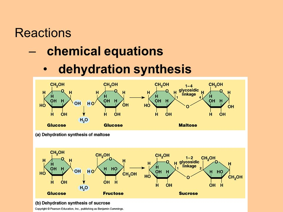 Reactions –chemical equations dehydration synthesis