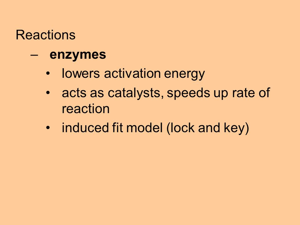 Reactions –enzymes lowers activation energy acts as catalysts, speeds up rate of reaction induced fit model (lock and key)