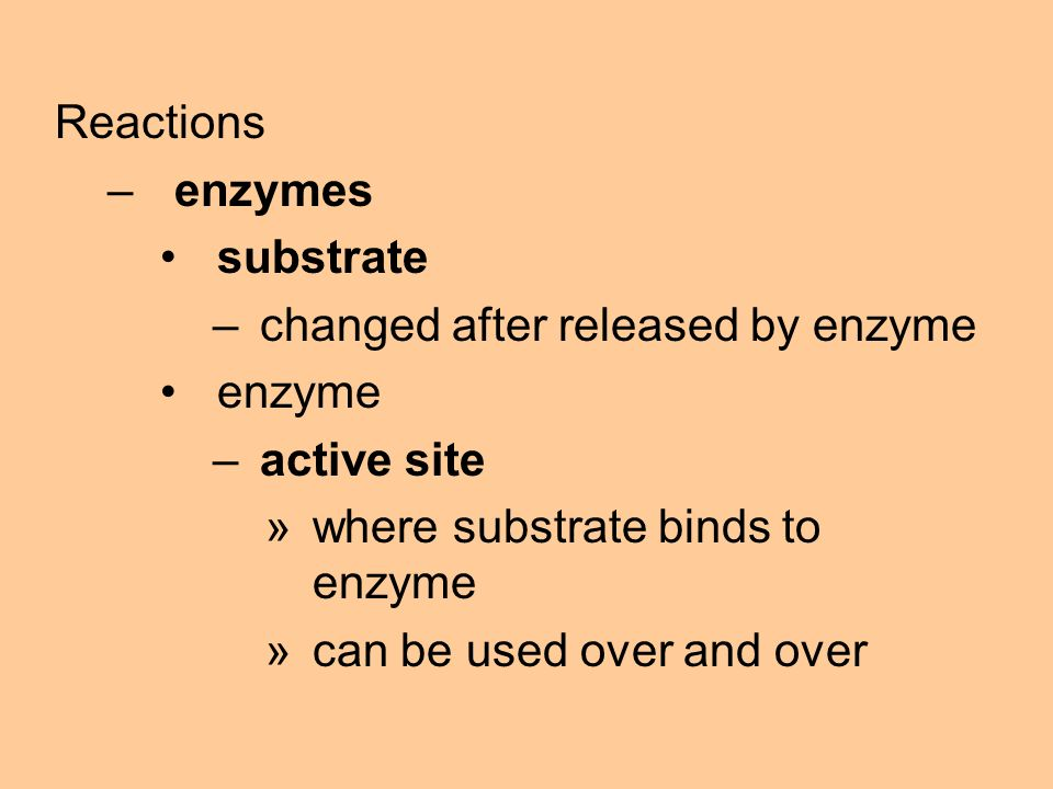 Reactions –enzymes substrate –changed after released by enzyme enzyme –active site »where substrate binds to enzyme »can be used over and over