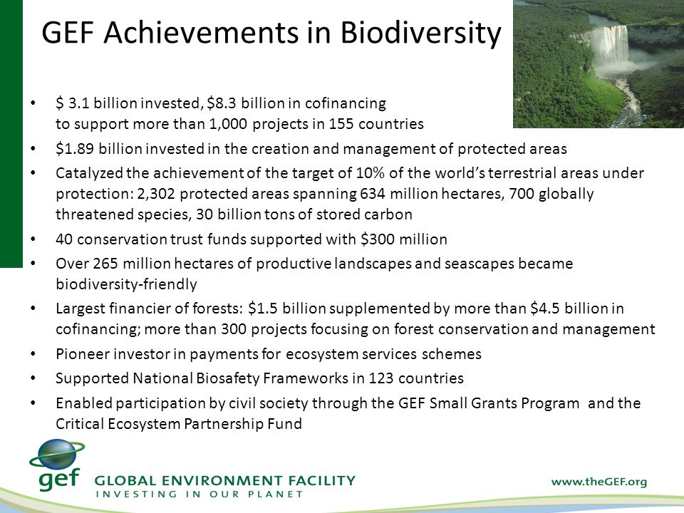 GEF Achievements in Biodiversity $ 3.1 billion invested, $8.3 billion in cofinancing to support more than 1,000 projects in 155 countries $1.89 billion invested in the creation and management of protected areas Catalyzed the achievement of the target of 10% of the world's terrestrial areas under protection: 2,302 protected areas spanning 634 million hectares, 700 globally threatened species, 30 billion tons of stored carbon 40 conservation trust funds supported with $300 million Over 265 million hectares of productive landscapes and seascapes became biodiversity-friendly Largest financier of forests: $1.5 billion supplemented by more than $4.5 billion in cofinancing; more than 300 projects focusing on forest conservation and management Pioneer investor in payments for ecosystem services schemes Supported National Biosafety Frameworks in 123 countries Enabled participation by civil society through the GEF Small Grants Program and the Critical Ecosystem Partnership Fund