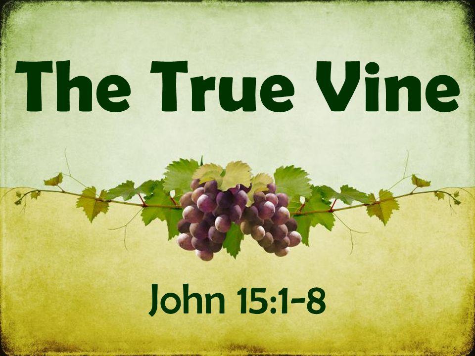 The True Vine John 15:1-8  Symbols: Jesus is the vine The