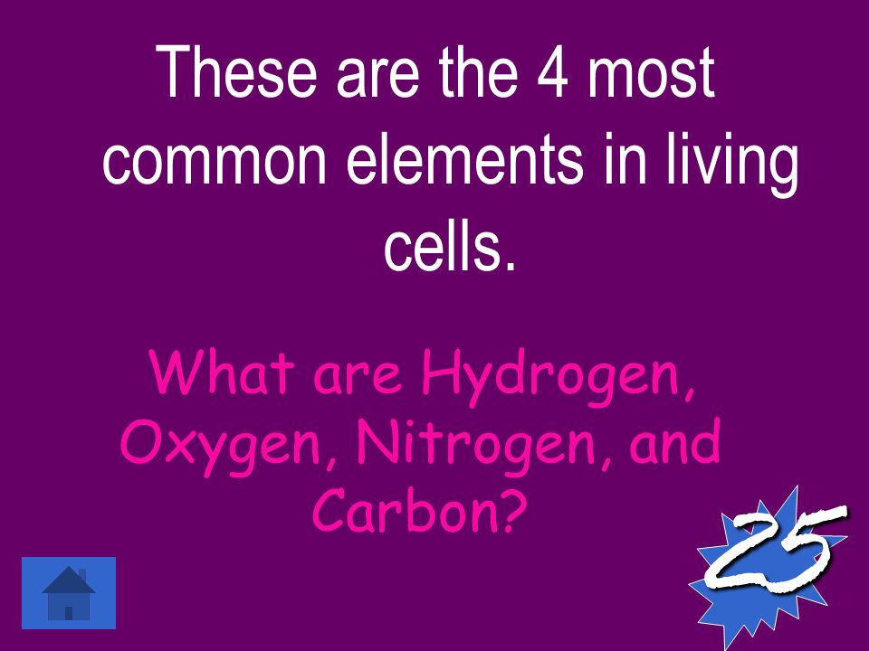 These are the 4 most common elements in living cells.
