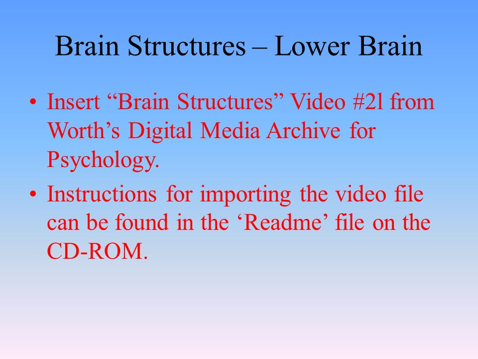 Brain Structures – Lower Brain Insert Brain Structures Video #2l from Worth's Digital Media Archive for Psychology.