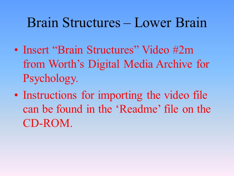 Brain Structures – Lower Brain Insert Brain Structures Video #2m from Worth's Digital Media Archive for Psychology.