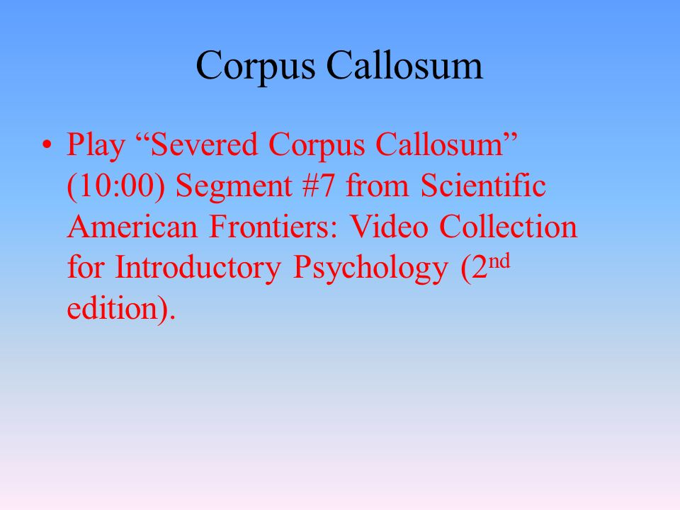 Play Severed Corpus Callosum (10:00) Segment #7 from Scientific American Frontiers: Video Collection for Introductory Psychology (2 nd edition).