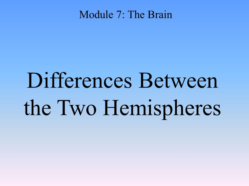 Differences Between the Two Hemispheres Module 7: The Brain