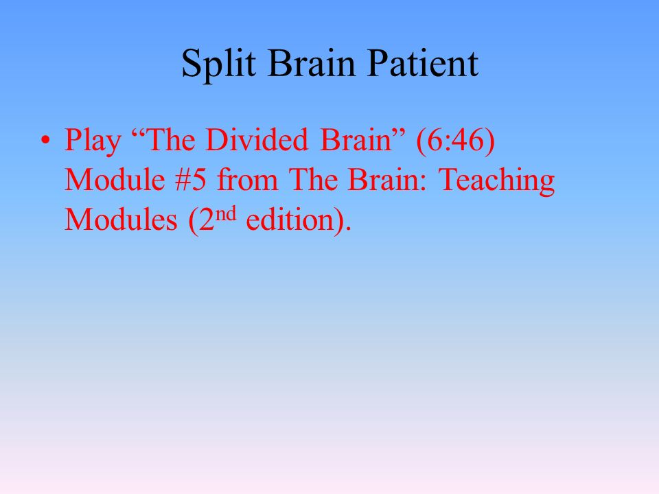 Split Brain Patient Play The Divided Brain (6:46) Module #5 from The Brain: Teaching Modules (2 nd edition).