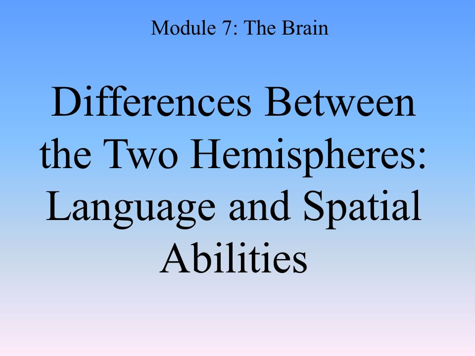 Differences Between the Two Hemispheres: Language and Spatial Abilities Module 7: The Brain