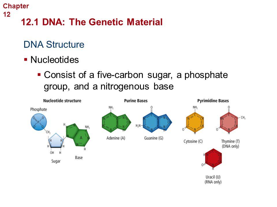 2 Molecular Genetics