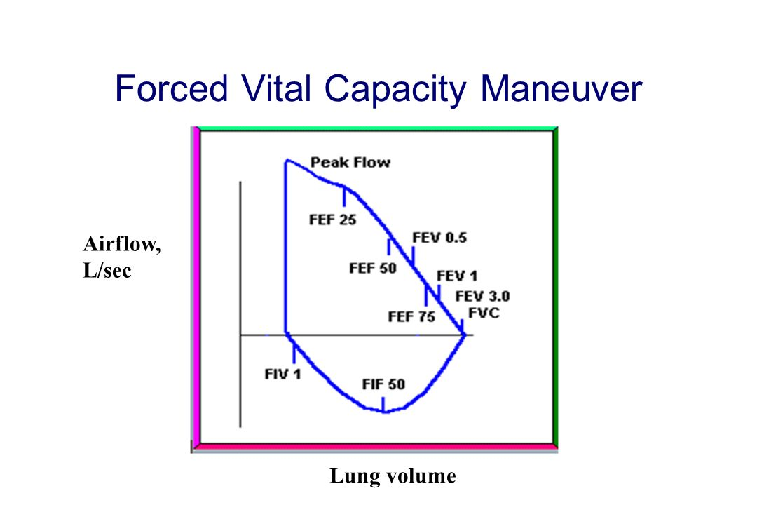 Forced Vital Capacity Maneuver Airflow, L/sec Lung volume