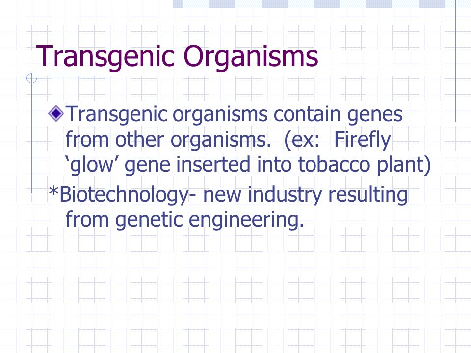 Transgenic Organisms Transgenic organisms contain genes from other organisms.