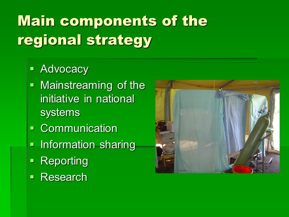 Main components of the regional strategy  Advocacy  Mainstreaming of the initiative in national systems  Communication  Information sharing  Reporting  Research