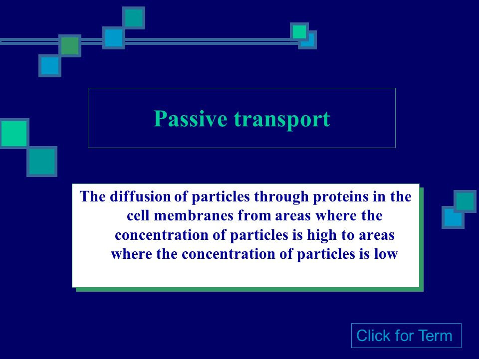 The diffusion of particles through proteins in the cell membranes from areas where the concentration of particles is high to areas where the concentration of particles is low Click for Term
